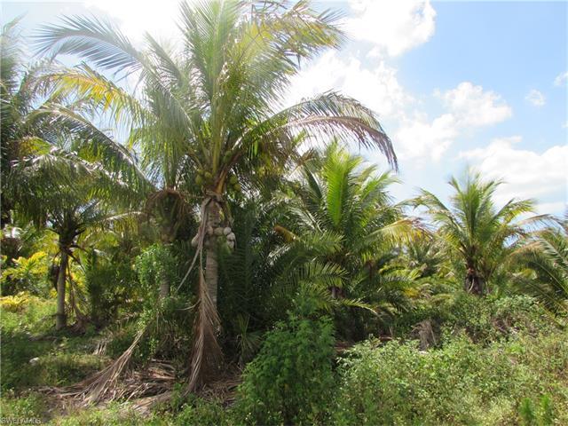 Stringfellow RDBokeelia, Florida 33922 is listed for sale as MLS Listing 217022660