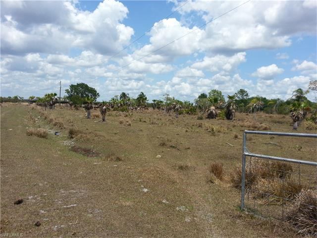 1195 Carson DR  LABELLE FL 33935 is listed for sale as MLS Listing 217031617